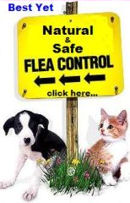 Flea FRee All Natural Flea and Tick Control